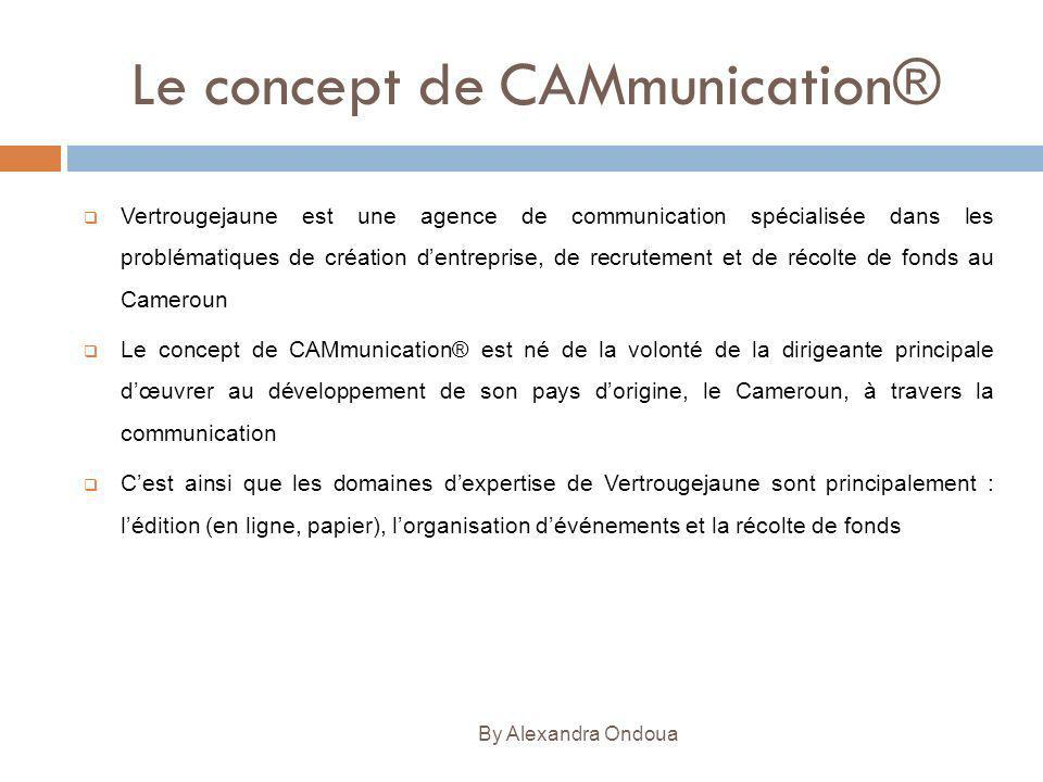 Le concept de CAMmunication® Vertrougejaune est une agence de communication spécialisée dans les problématiques de création dentreprise, de recrutemen