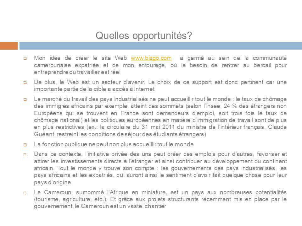 Quelles opportunités? Mon idée de créer le site Web www.bizgo.com a germé au sein de la communauté camerounaise expatriée et de mon entourage, où le b