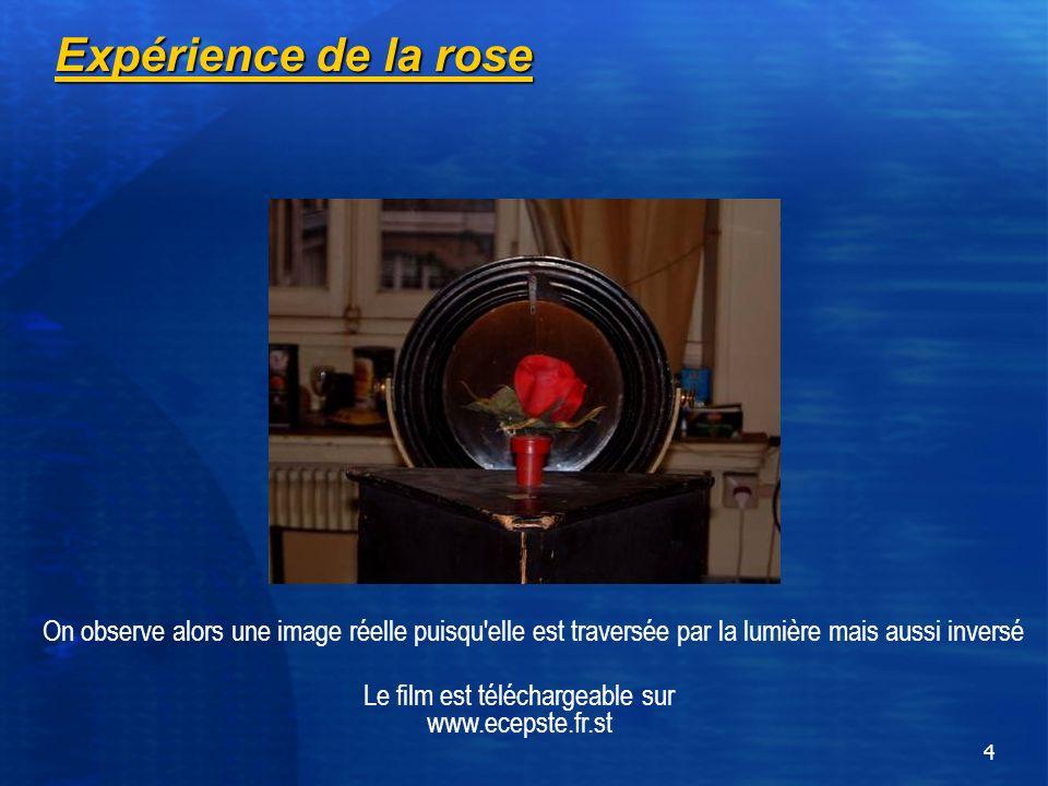 4 Expérience de la rose On observe alors une image réelle puisqu'elle est traversée par la lumière mais aussi inversé Le film est téléchargeable sur w