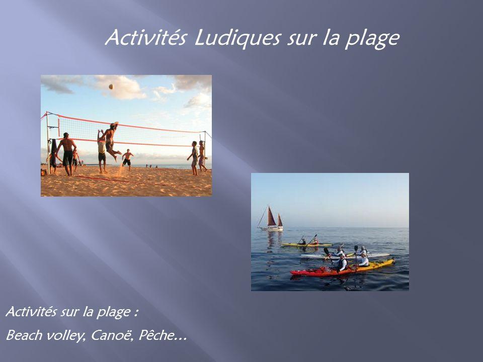 Activités Ludiques sur la plage Activités sur la plage : Beach volley, Canoë, Pêche…
