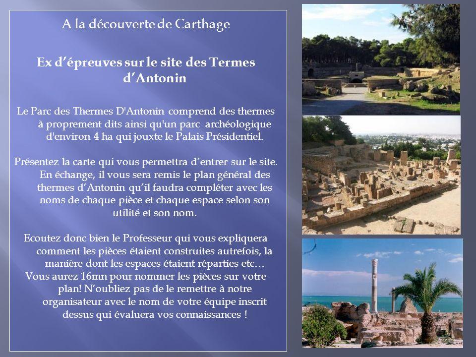 A la découverte de Carthage Ex dépreuves sur le site des Termes dAntonin Le Parc des Thermes D Antonin comprend des thermes à proprement dits ainsi qu un parc archéologique d environ 4 ha qui jouxte le Palais Présidentiel.