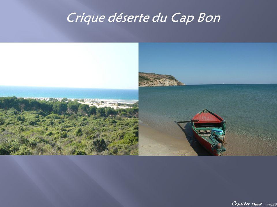 Arrivée sur le campement éphémère monté spécialement pour vous sur la crique du Cap Bon