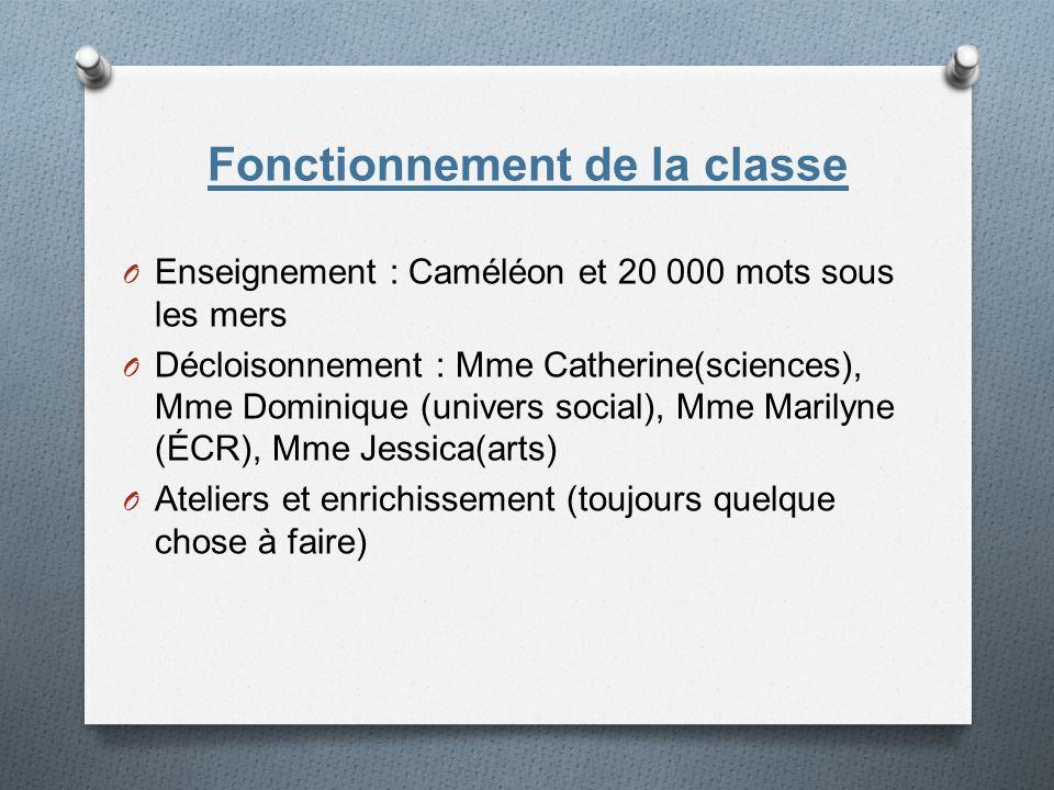Fonctionnement de la classe O Enseignement : Caméléon et 20 000 mots sous les mers O Décloisonnement : Mme Catherine(sciences), Mme Dominique (univers