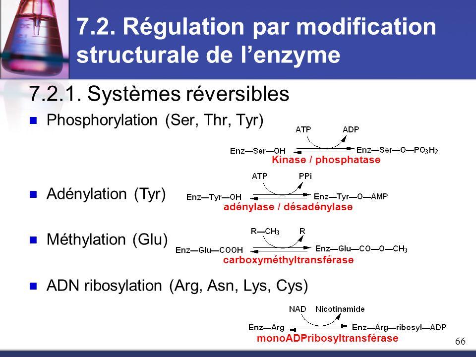 7.2. Régulation par modification structurale de lenzyme 7.2.1. Systèmes réversibles Phosphorylation (Ser, Thr, Tyr) Adénylation (Tyr) Méthylation (Glu