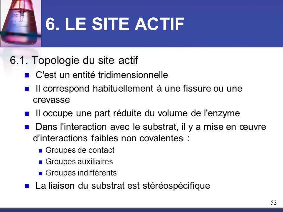 6. LE SITE ACTIF 6.1. Topologie du site actif C'est un entité tridimensionnelle Il correspond habituellement à une fissure ou une crevasse Il occupe u