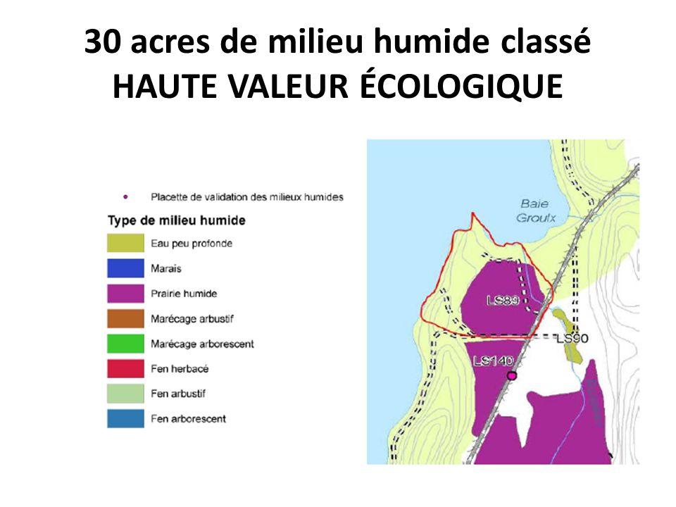 30 acres de milieu humide classé HAUTE VALEUR ÉCOLOGIQUE