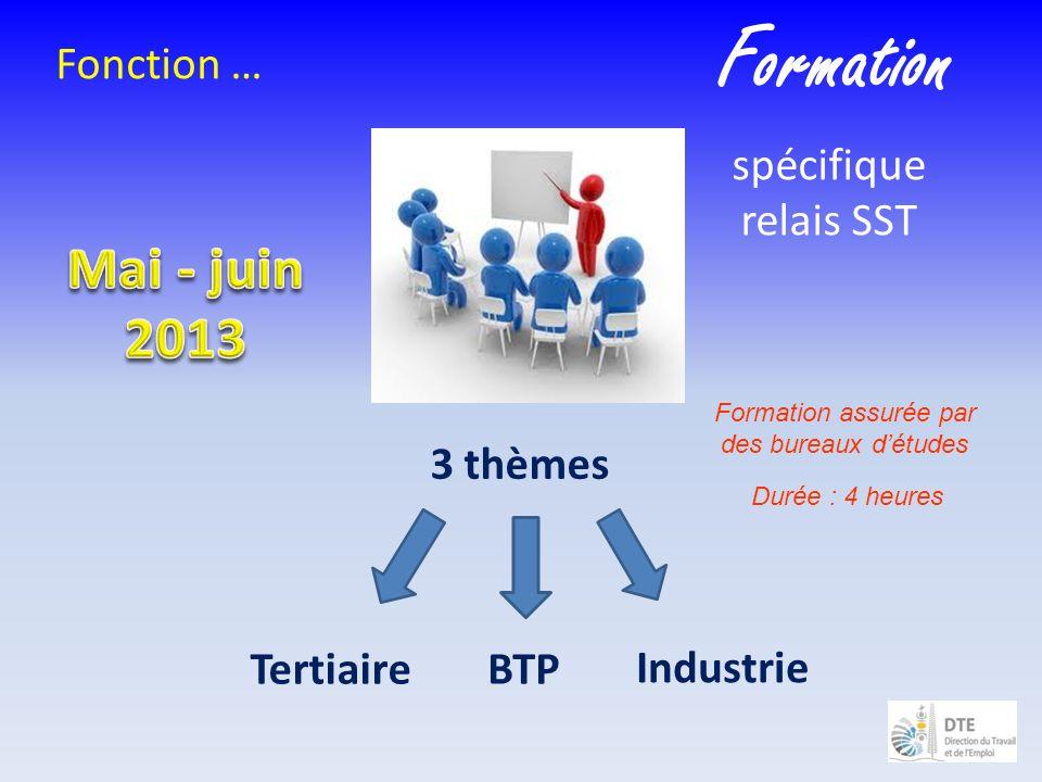 Formation assurée par des bureaux détudes Fonction … spécifique relais SST 3 thèmes BTP Industrie Tertiaire Durée : 4 heures Formation