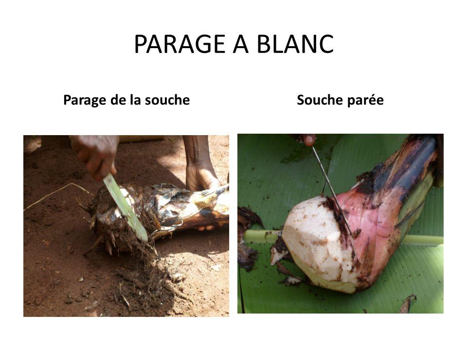 a) le parage à « blanc » A l'aide d'un couteau bien tranchant et de préférable sur une surface appropriée( feuilles propres, établi ), le parage peut