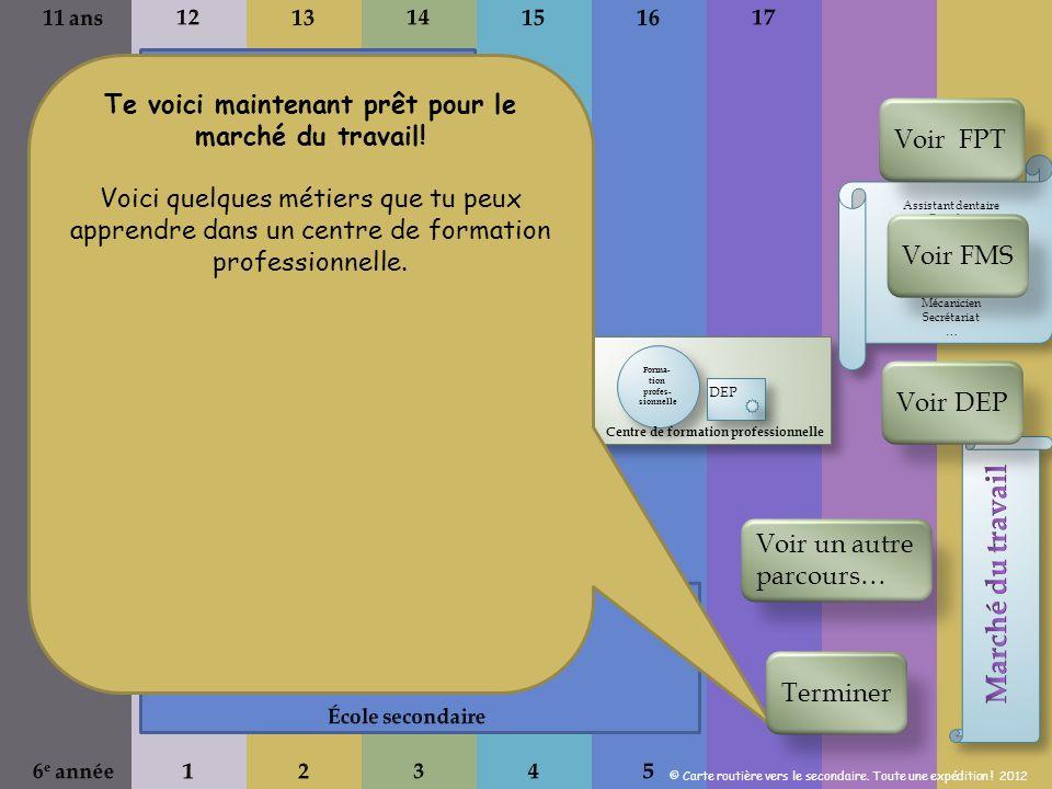 Forma- tion profes- sionnelle DEP Centre de formation professionnelle Te voici maintenant prêt pour le marché du travail.