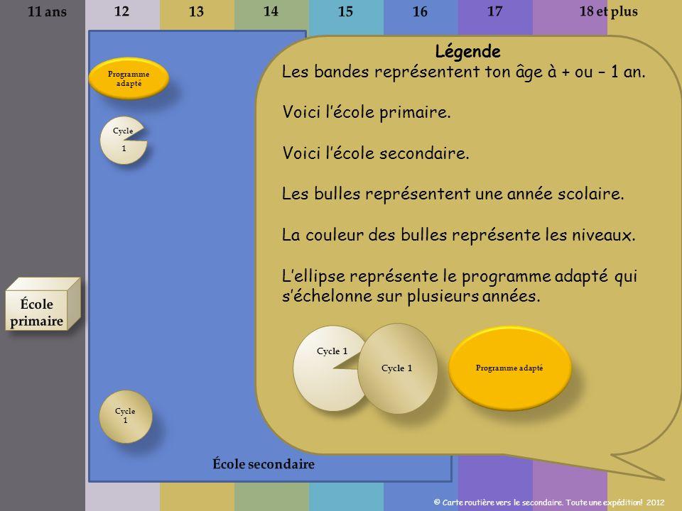 Programme de formation du primaire Cycle 1 Programme de formation du secondaire Les élèves peuvent être regroupés par voies ou par champs dintérêt.