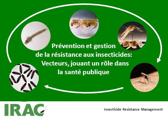 Insecticide Resistance Management Prévention et gestion de la résistance aux insecticides: Vecteurs, jouant un rôle dans la santé publique