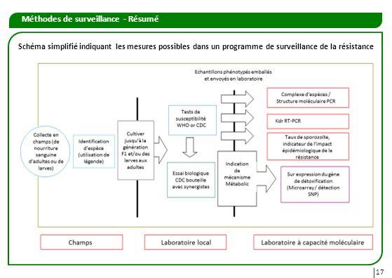 Méthodes de surveillance - Résumé 17 Schéma simplifié indiquant les mesures possibles dans un programme de surveillance de la résistance