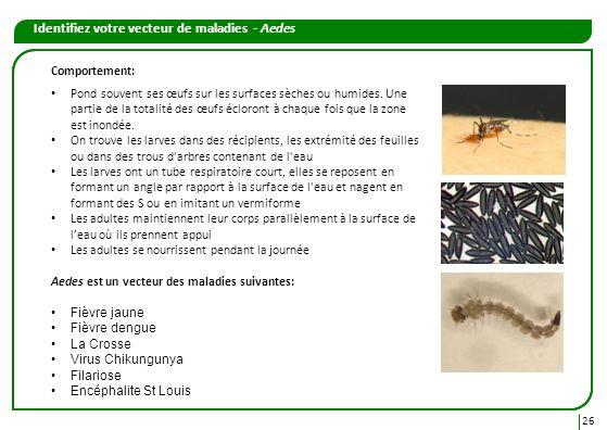 26 Identifiez votre vecteur de maladies - Aedes Comportement: Pond souvent ses œufs sur les surfaces sèches ou humides. Une partie de la totalité des