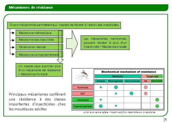 6 Divers mécanismes permettent aux insectes de résister à laction des insecticides Résistance métabolique Résistance des sites cibles Pénétration rédu
