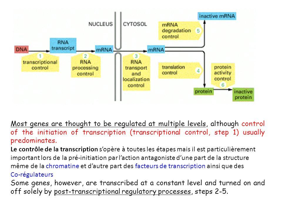 Post -transcriptional Control mechanisms