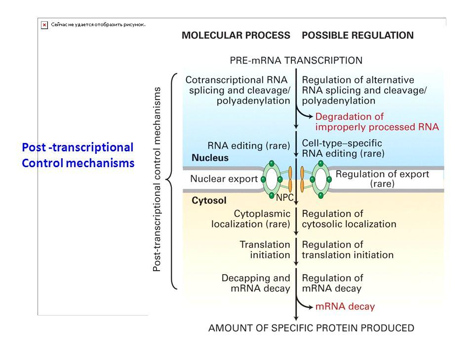 deux familles de protéines: (i) les 7 protéines Sm (SmB/B , D1, D2, E, F, G) dites protéines de cœur , s associant en anneau heptamèrique autour des snRNAs U1, U2, U4, U5, U6protéines SmU1 (ii) les protéines dites spécifiques retrouvées uniquement sur un type de snRNP (comme U1A, 70K et U1C, spécifiques de la snRNP U1).