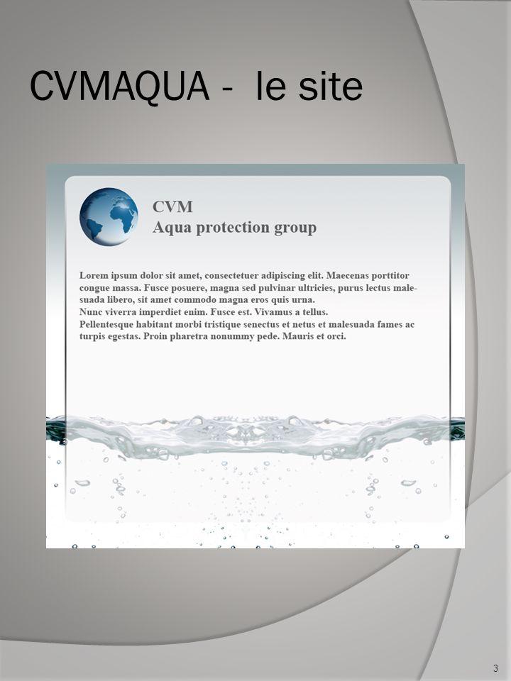 Ce quil faut faire À partir du site Web actuel, il sagit de faire un gestionnaire de contenu.