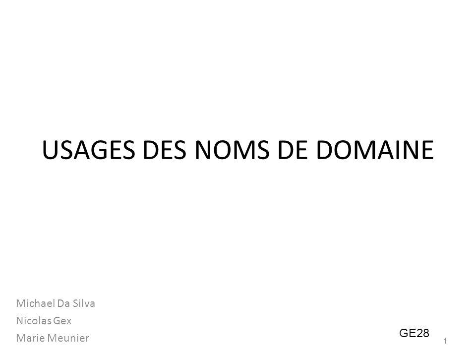USAGES DES NOMS DE DOMAINE Michael Da Silva Nicolas Gex Marie Meunier GE28 1