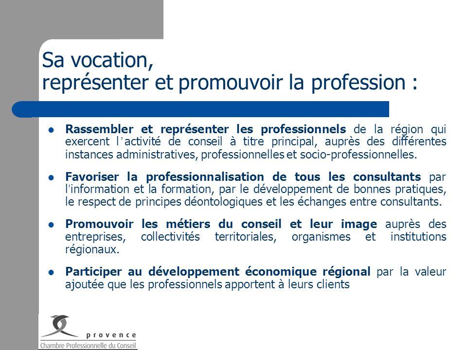 Sa vocation, représenter et promouvoir la profession : Rassembler et représenter les professionnels de la région qui exercent l activité de conseil à