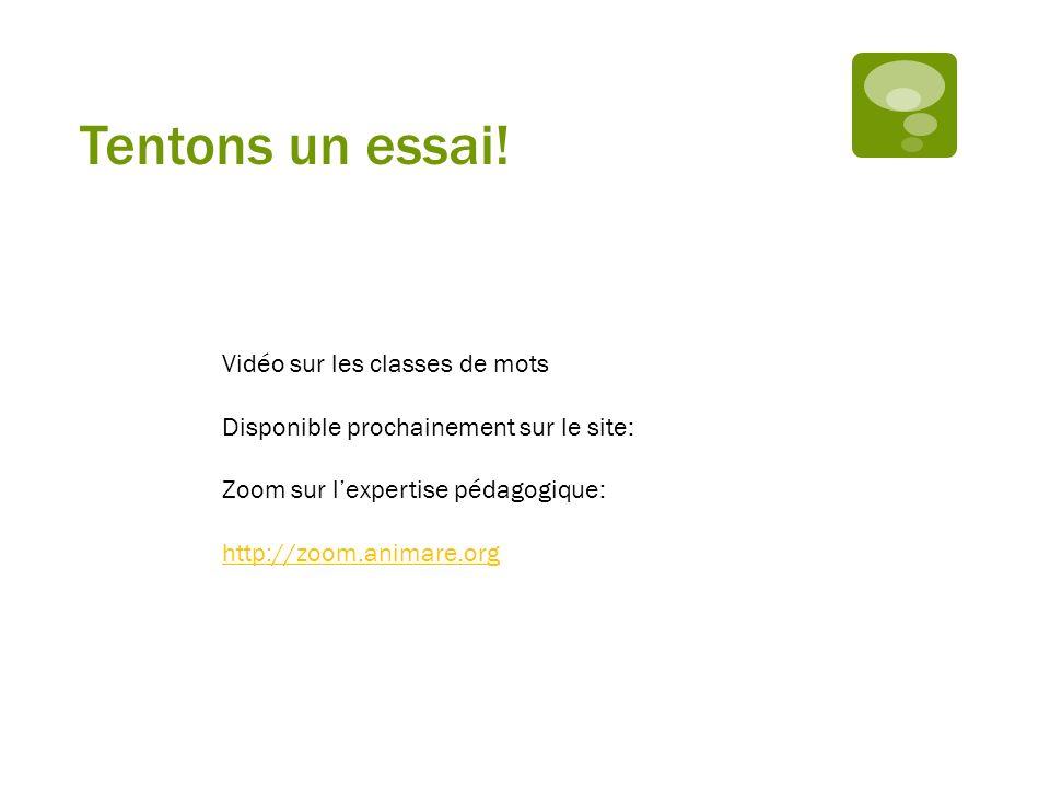 Tentons un essai! Vidéo sur les classes de mots Disponible prochainement sur le site: Zoom sur lexpertise pédagogique: http://zoom.animare.org