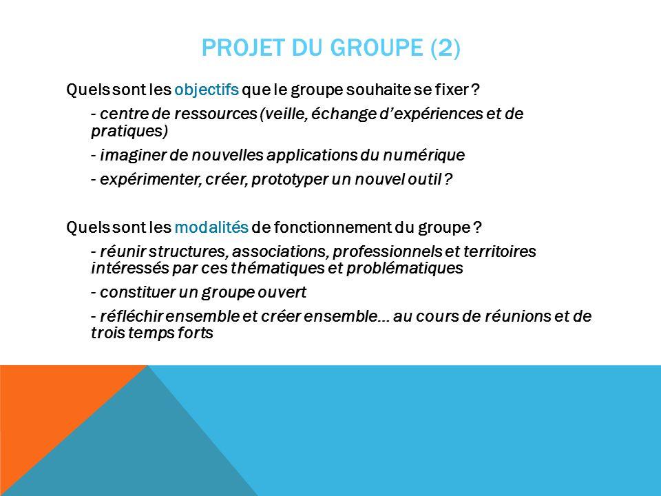 PROJET DU GROUPE (2) Quels sont les objectifs que le groupe souhaite se fixer ? - centre de ressources (veille, échange dexpériences et de pratiques)