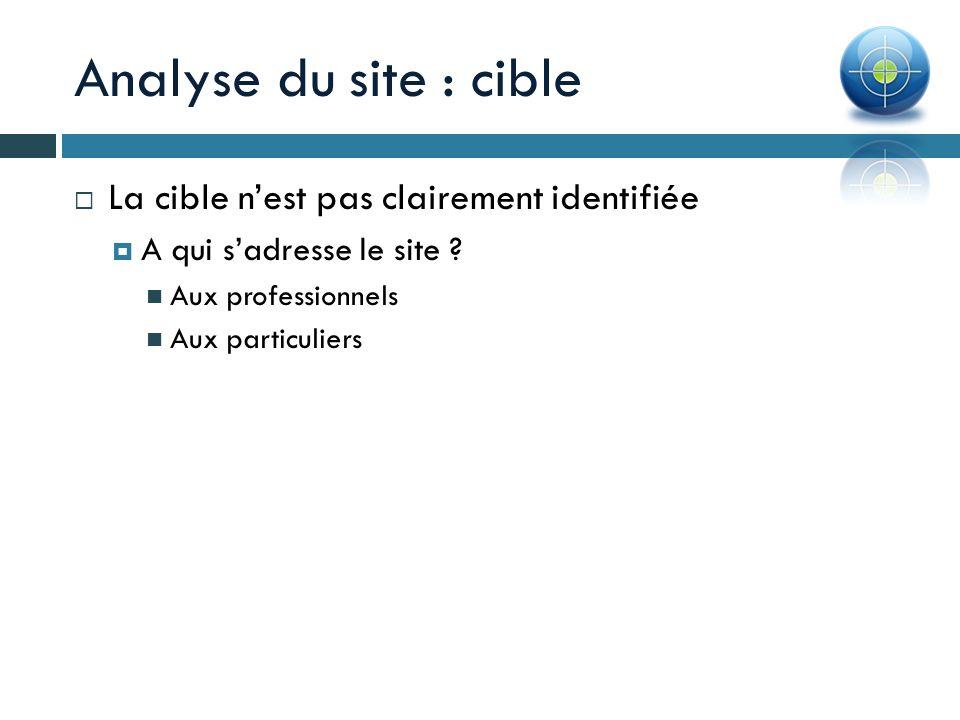Analyse du site : cible La cible nest pas clairement identifiée A qui sadresse le site ? Aux professionnels Aux particuliers