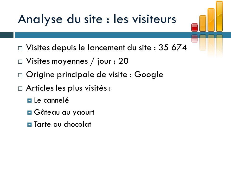 Analyse du site : les visiteurs Visiteurs principalement particuliers Les visiteurs sont intéressés par les recettes Le site est bien référencé, google étant le point dentrée principal sur le site