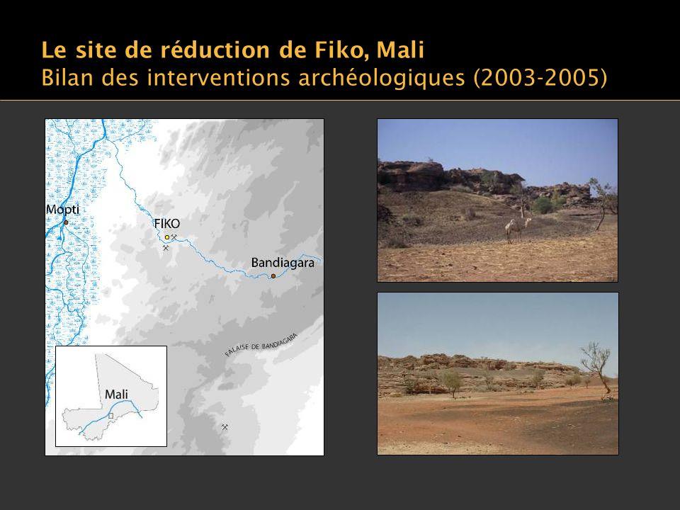 Le site de réduction de Fiko, Mali Bilan des interventions archéologiques (2003-2005)