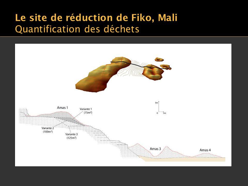 Le site de réduction de Fiko, Mali Quantification des déchets