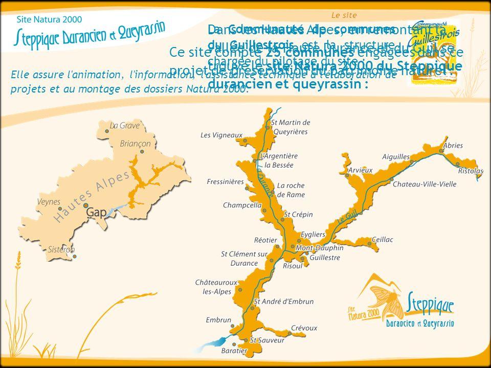 Dans les Hautes Alpes, en remontant la vallée de la Haute Durance et du Guil se trouve le site Natura 2000 du Steppique durancien et queyrassin : La C