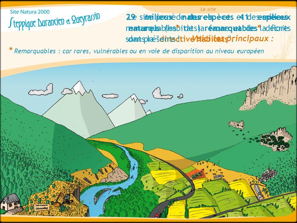 Le site possède des espèces et des milieux naturels (habitats) remarquables* décrits dans la