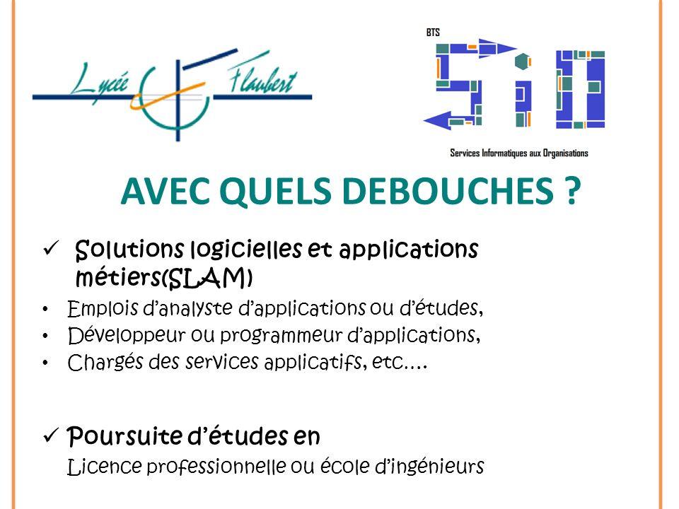 Solutions logicielles et applications métiers(SLAM) Emplois danalyste dapplications ou détudes, Développeur ou programmeur dapplications, Chargés des