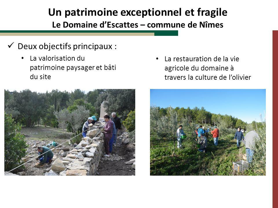 Deux objectifs principaux : La valorisation du patrimoine paysager et bâti du site Un patrimoine exceptionnel et fragile Le Domaine dEscattes – commun