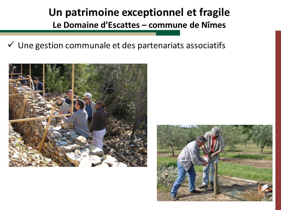 Une gestion communale et des partenariats associatifs Un patrimoine exceptionnel et fragile Le Domaine dEscattes – commune de Nîmes