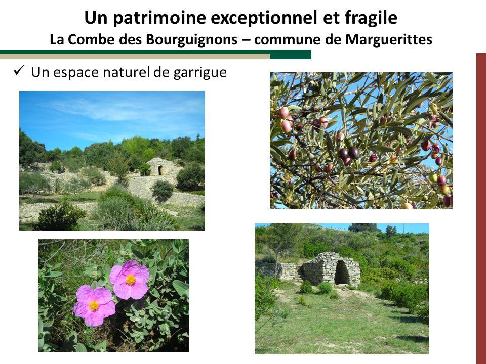 Un espace naturel de garrigue Un patrimoine exceptionnel et fragile La Combe des Bourguignons – commune de Marguerittes