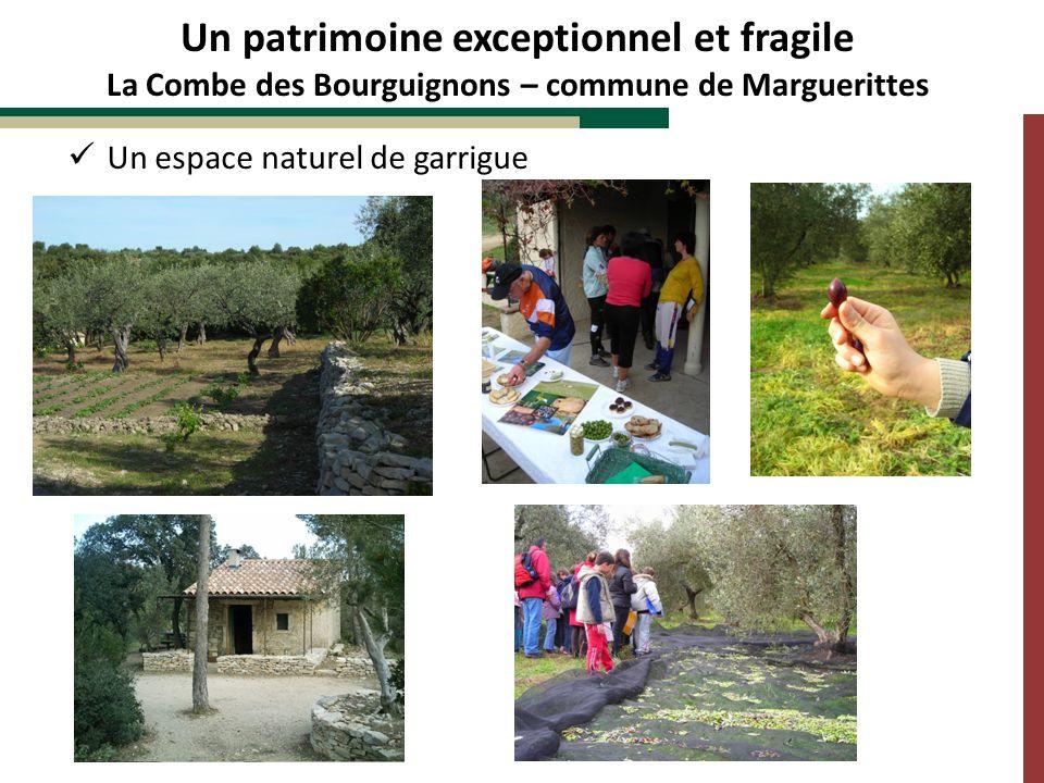 Un patrimoine exceptionnel et fragile La Combe des Bourguignons – commune de Marguerittes Un espace naturel de garrigue