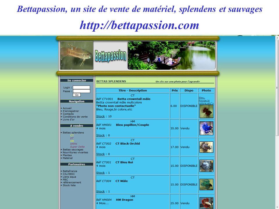 Bettapassion, un site de vente de matériel, splendens et sauvages http://bettapassion.com