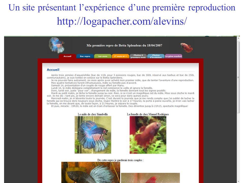 Un site présentant lexpérience dune première reproduction http://logapacher.com/alevins/