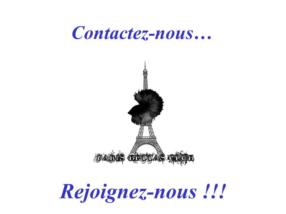 Contactez-nous… Rejoignez-nous !!!