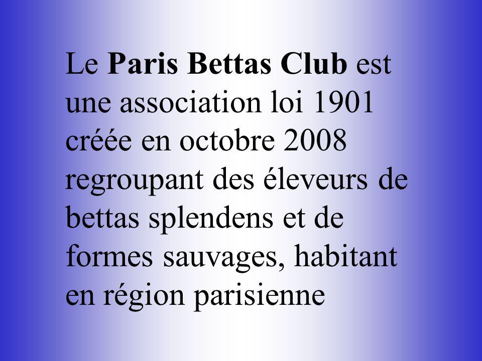 Le Paris Bettas Club est une association loi 1901 créée en octobre 2008 regroupant des éleveurs de bettas splendens et de formes sauvages, habitant en