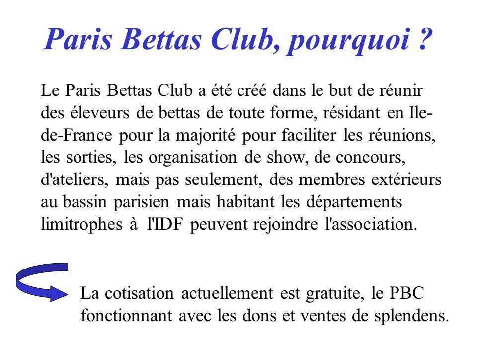 Paris Bettas Club, pourquoi ? Le Paris Bettas Club a été créé dans le but de réunir des éleveurs de bettas de toute forme, résidant en Ile- de-France