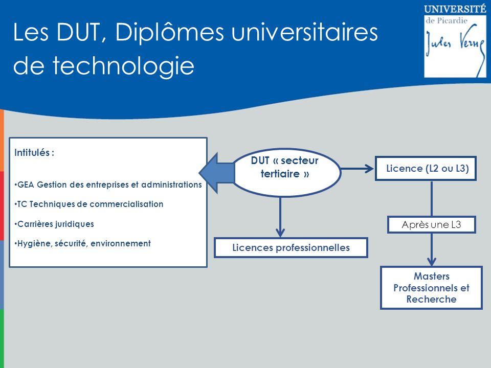 Les DUT, Diplômes universitaires de technologie Licences professionnelles Masters Professionnels et Recherche Licence (L2 ou L3) DUT « secteur tertiai