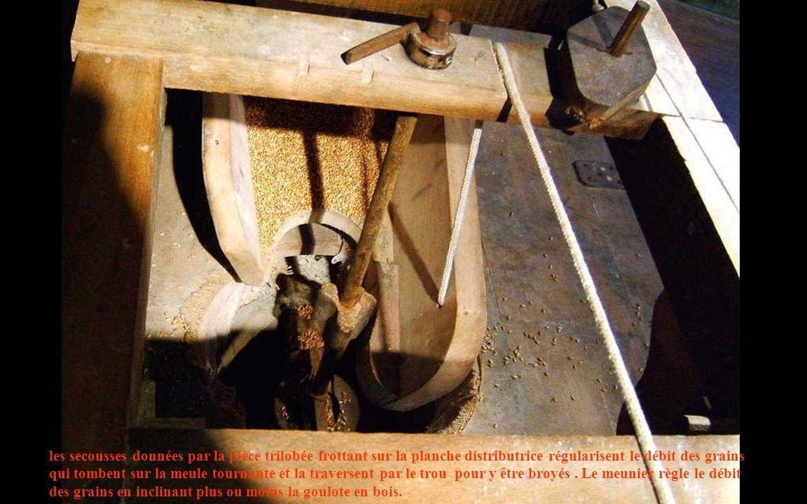 les secousses données par la pièce trilobée frottant sur la planche distributrice régularisent le débit des grains qui tombent sur la meule tournante