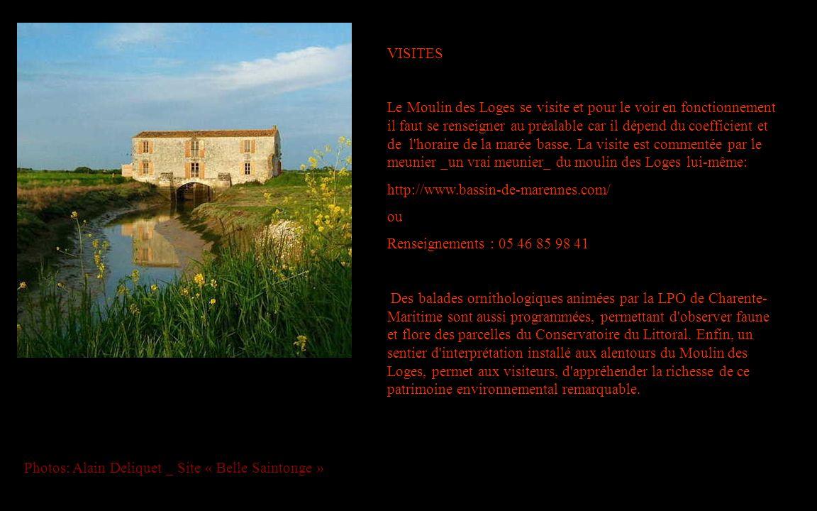 VISITES Le Moulin des Loges se visite et pour le voir en fonctionnement il faut se renseigner au préalable car il dépend du coefficient et de l'horair