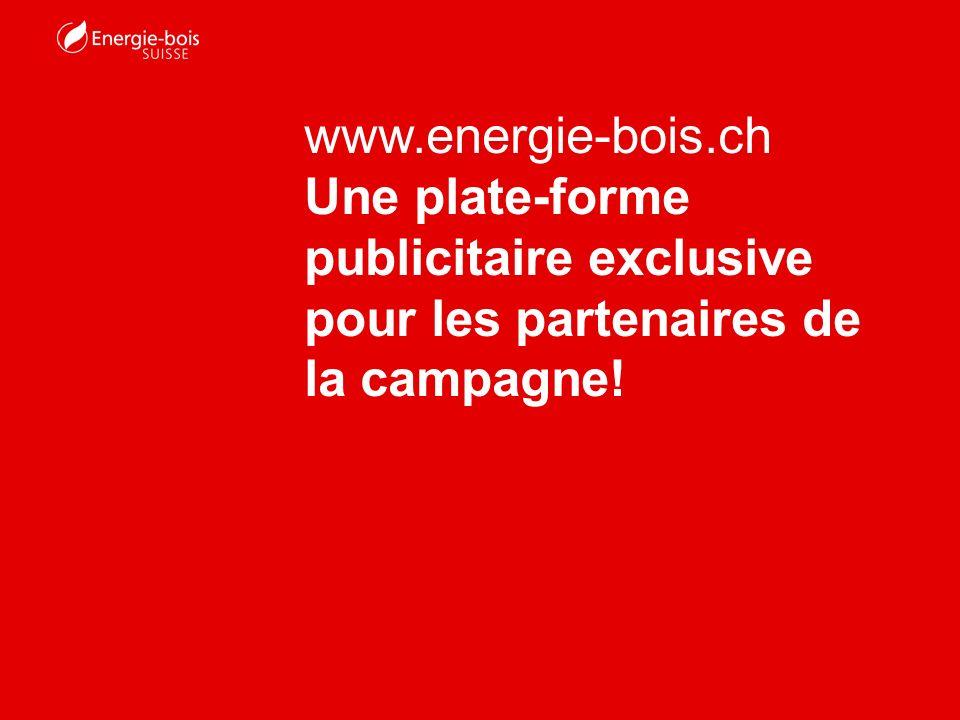 Le site web dEnergie-bois Suisse sest considérablement développé au cours des trois dernières années grâce à la campagne dimage consacrée à lénergie du bois.