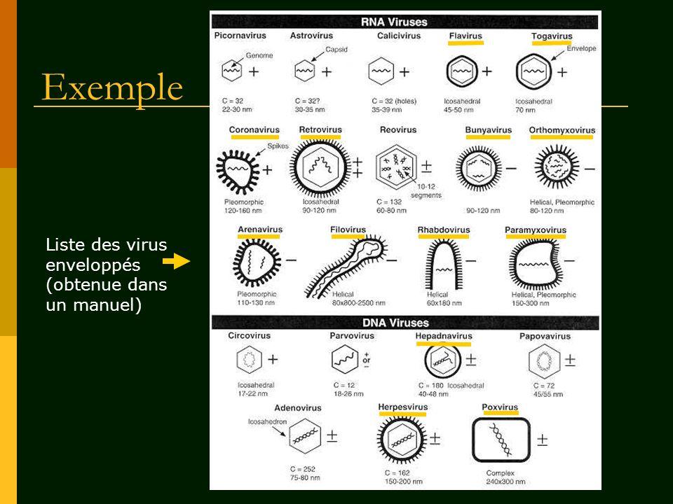 Exemple Liste des virus enveloppés (obtenue dans un manuel)