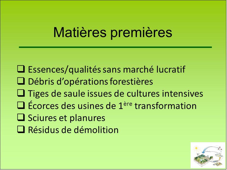 Matières premières Essences/qualités sans marché lucratif Débris dopérations forestières Tiges de saule issues de cultures intensives Écorces des usin