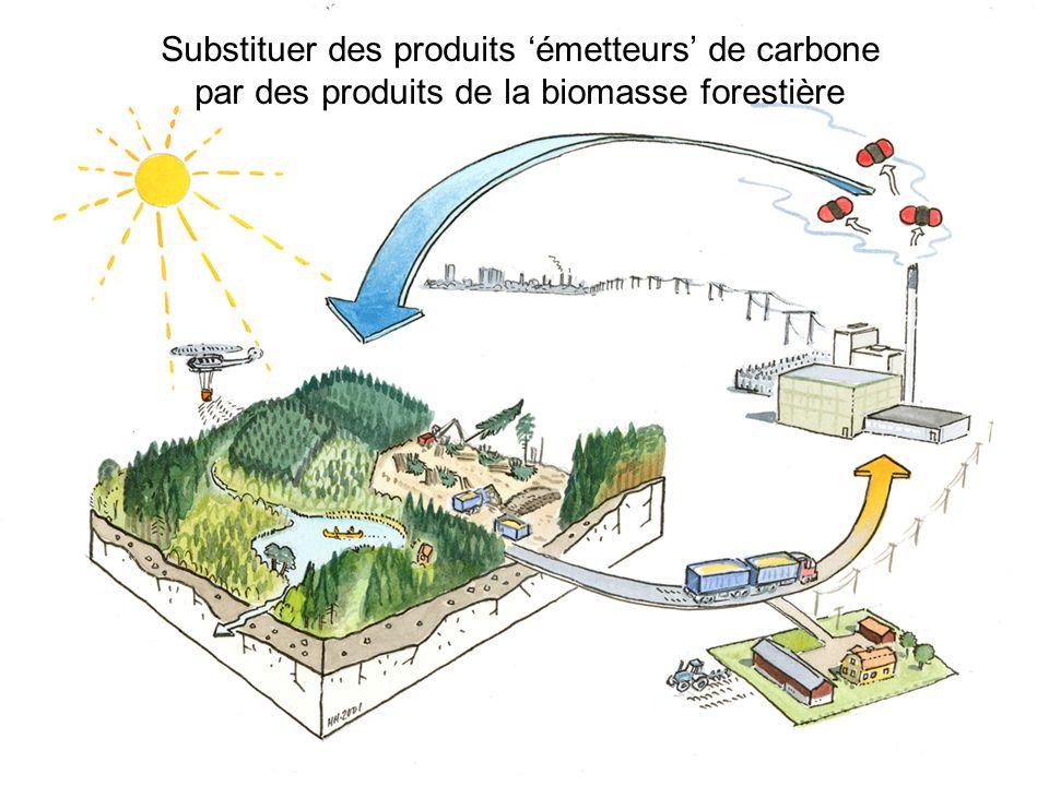 Substituer des produits émetteurs de carbone par des produits de la biomasse forestière