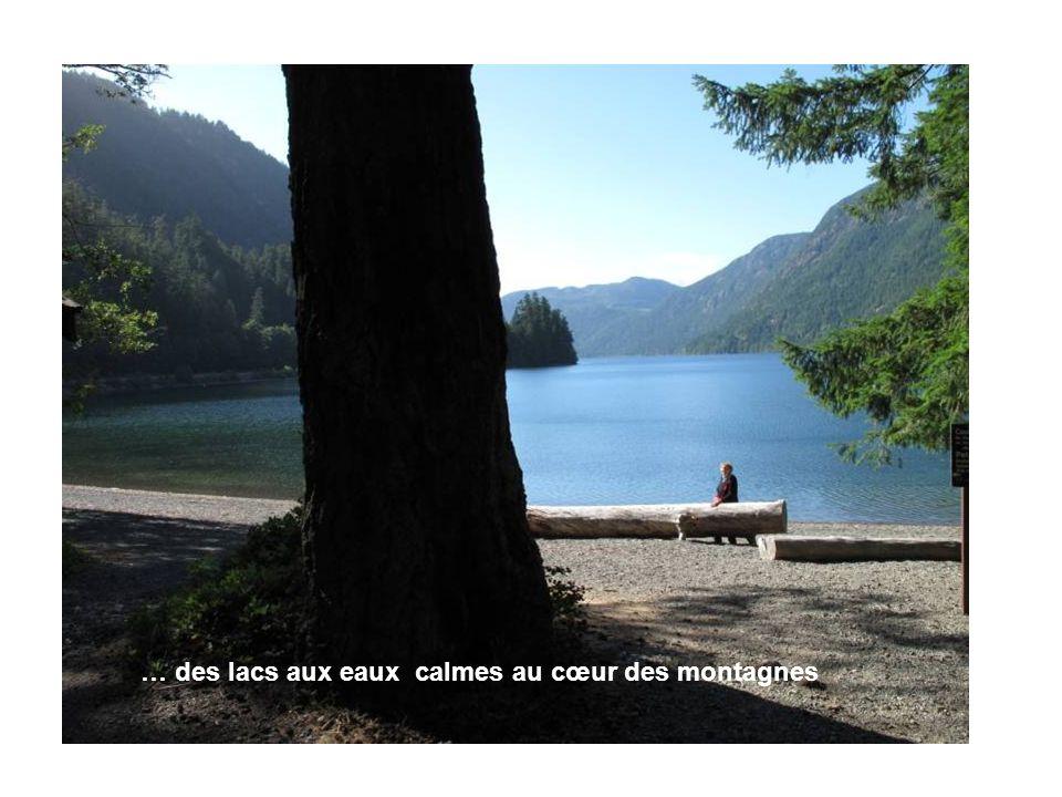 … des lacs aux eaux calmes au cœur des montagnes