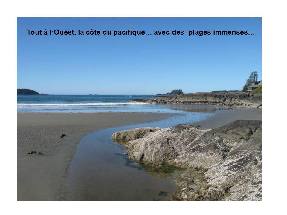 Tout à lOuest, la côte du pacifique… avec des plages immenses…